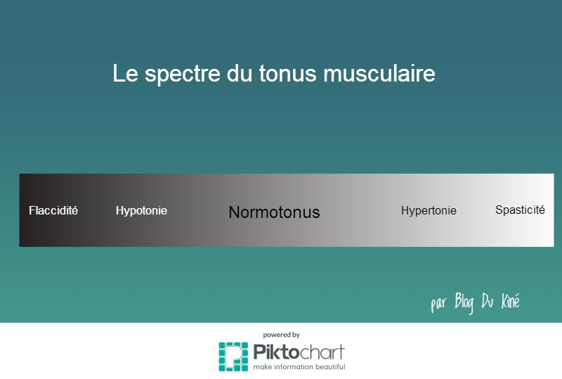Le spectre du tonus musculaire
